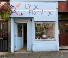Lingo Flamingo Shawlands Space